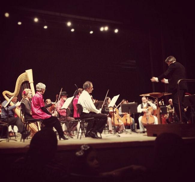 o instrumento preferido do francisco é a harpa -  é sempre uma felicidade enorme quando conseguimos sentar perto dela.